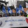 """Animalisti italiani: i """"perché no"""" all'acquario dell'Eur"""