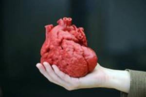 Con un cuore stampato in 3D salvato un bimbo di 14 mesi